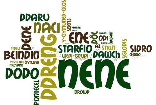 Wordle tafodiaith 2